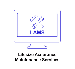 Lifesize Assurance Maintenance Services